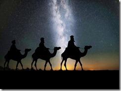 camels-1150075_1920