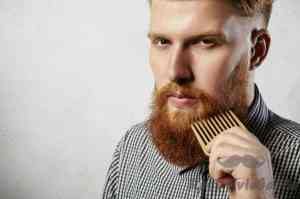 10 Best Beard Combs Reviews Of 2019 : Complete Guide