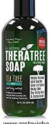 Antifungal Soap with Tea Tree Oil and Neem Body Wash- 100% organic body wash