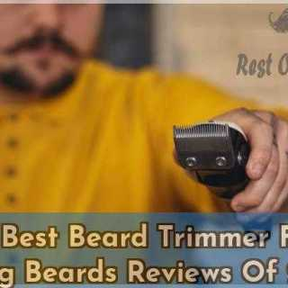15 Best Beard Trimmer For Long Beards Reviews Of 2019