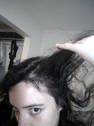Lipogaine Hair Growth Stimulating Natural Shampoo 1