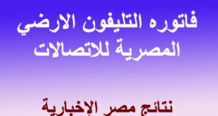 نتائج مصرية