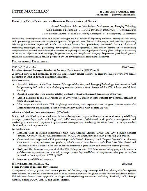 Executive Summary Resume Sample. Executive Summary Example For