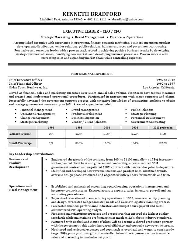 resume example ceo cfo executive 1 png