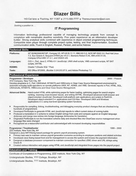 resume sample it programmer8 html jpg