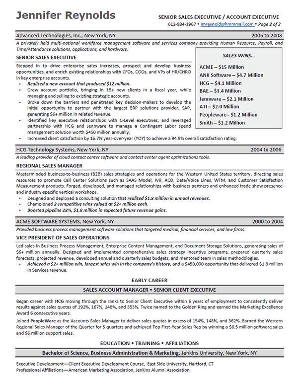 enterprise s executive resume example - Sales Executive Resume Template