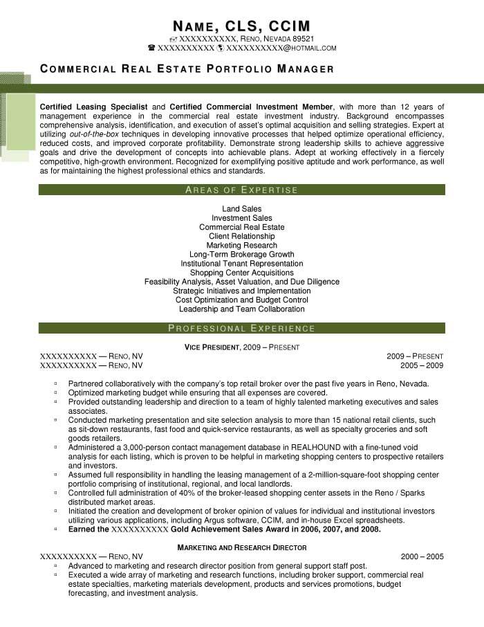 sample resume portfolio management resume manager gdragons sample