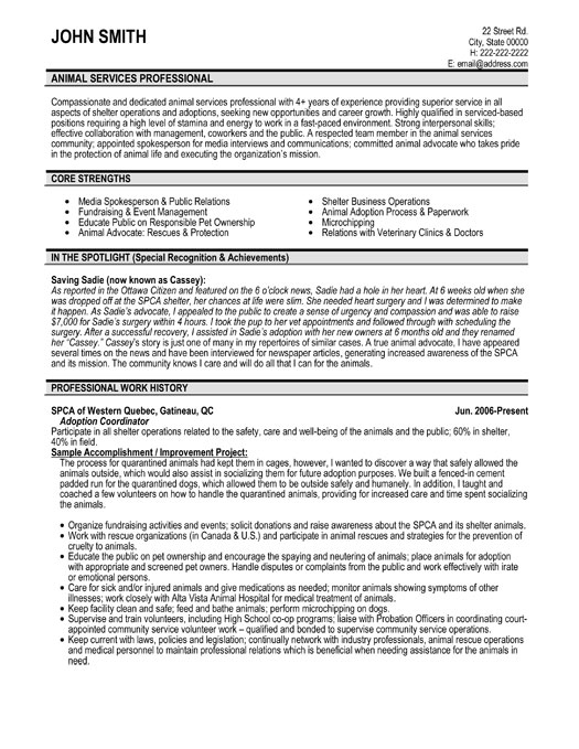 Resume Format Healthcare Consultant. catchy resume objectives ...