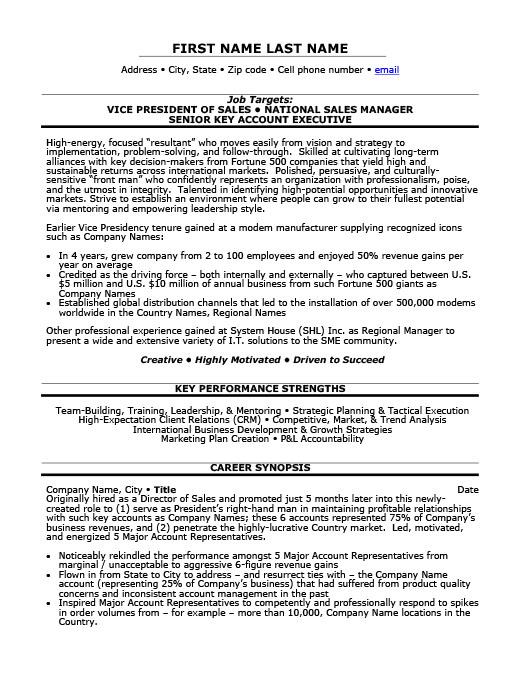 Vp Of Marketing Resume Vp Of Marketing Resume Sample