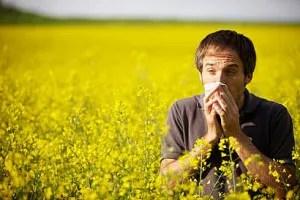 Calendario delle allergie