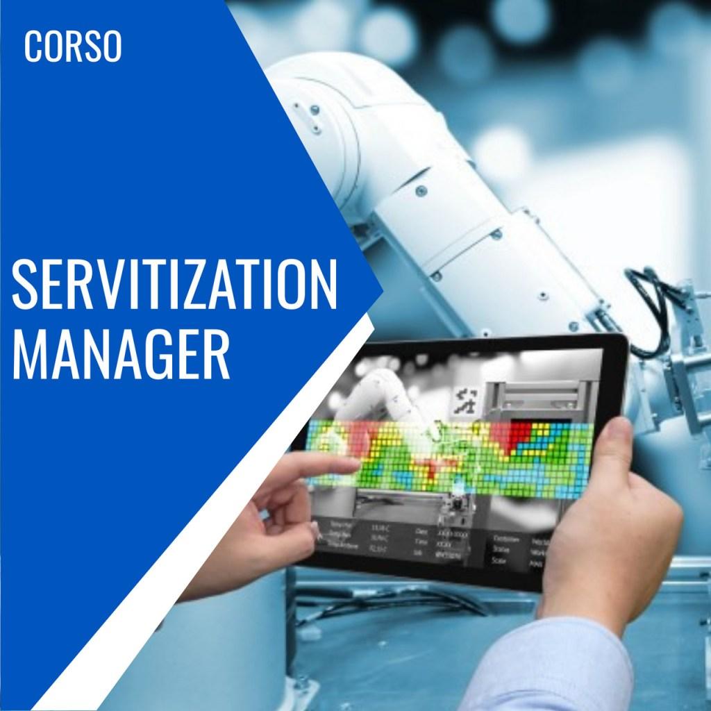 servitization manager