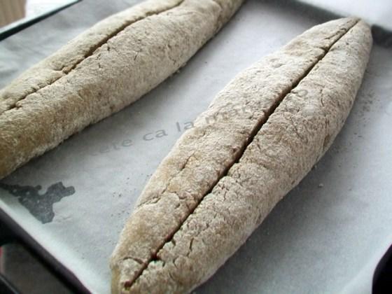 paine de secara 8