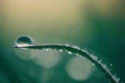 gestione della risorsa idrica