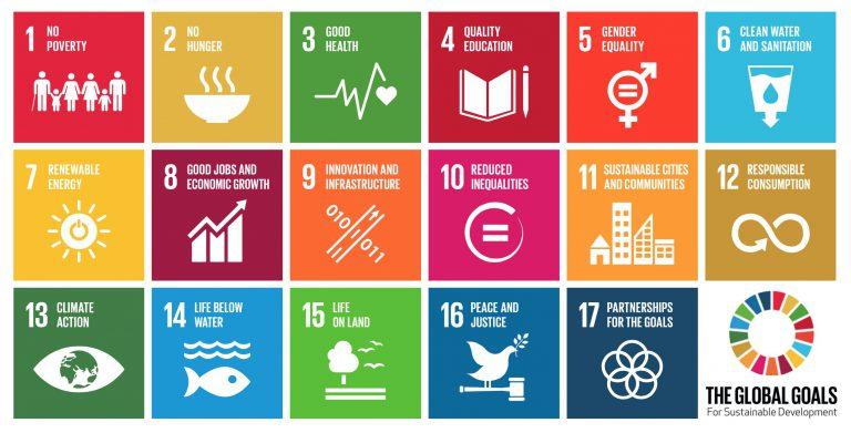 United Nation's Sustainable Development Goals and RetinaRisk