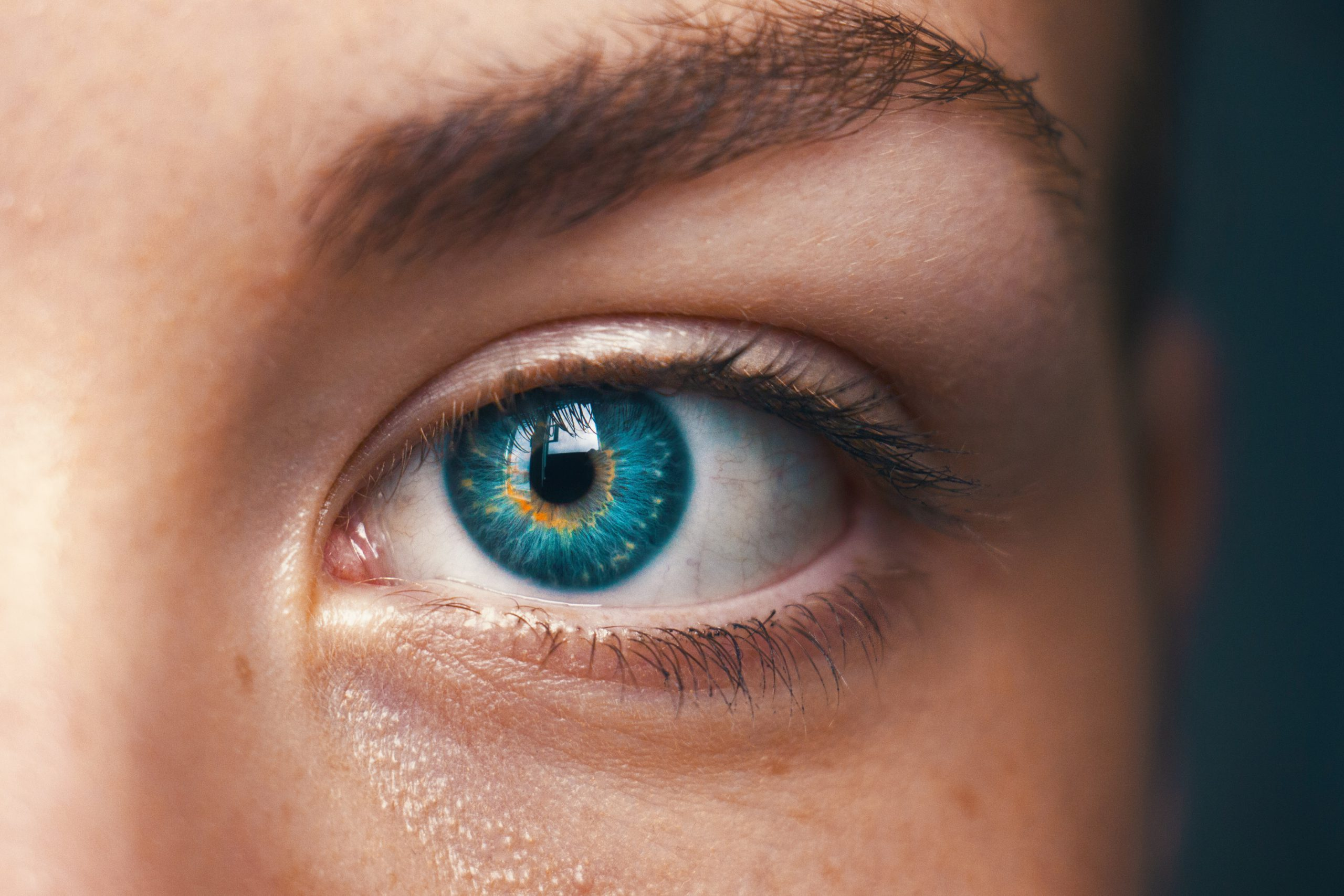 The different stages of diabetic retinopathy can be reversible