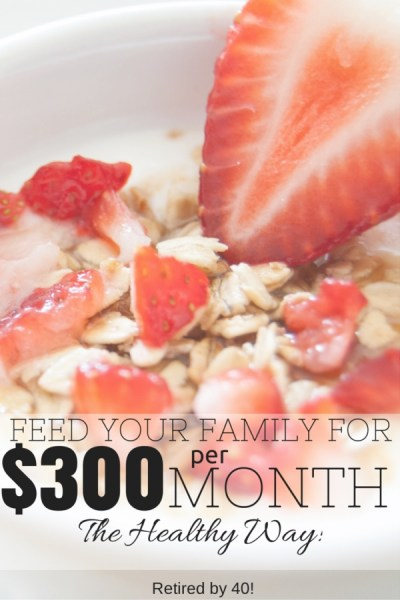 For $300 a month I buy groceries, cleaning supplies, toiletries, and even diapers & formula for my family!  Learn how to do this for your family in this 3-part series!