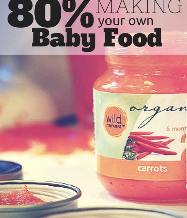 I Saved 80% Making Baby Food!