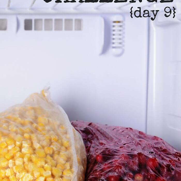 Empty The Freezer Challenge {Day 10}
