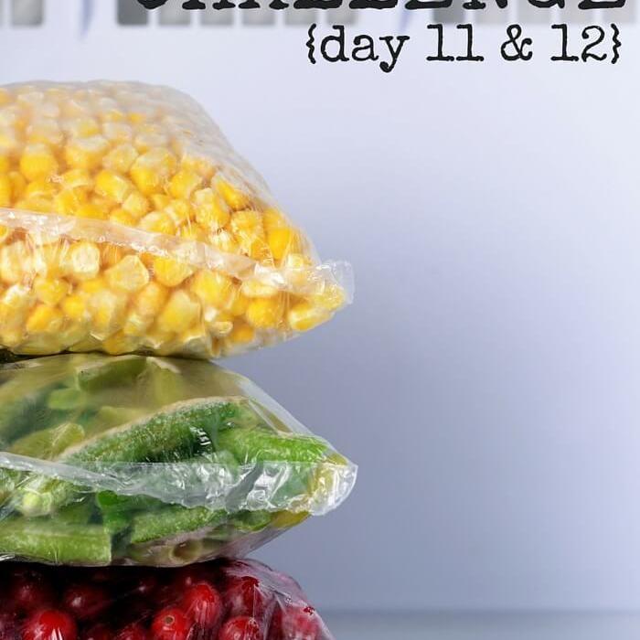 Empty The Freezer Challenge {Day 11 & 12}