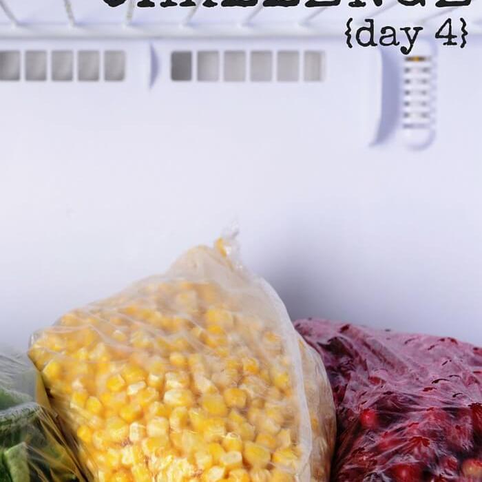 Empty The Freezer Challenge {Day 4}