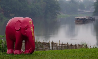 A red elephant in the jungle.