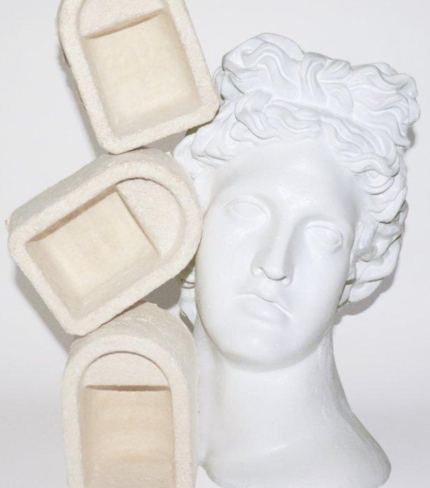 Shrine's Mushroom Arch packaging