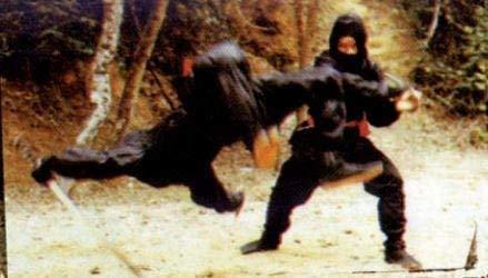 Release: Asia Line Vol.30: Die Vollstrecker der Ninja