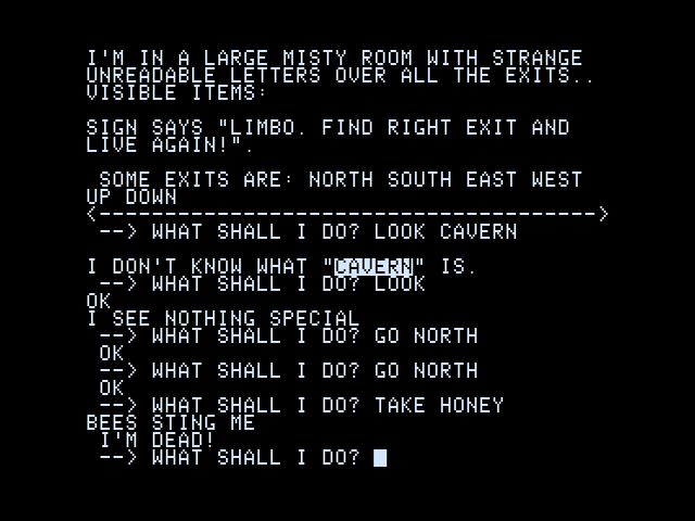 Screen from the original 'Adventureland' for Apple II