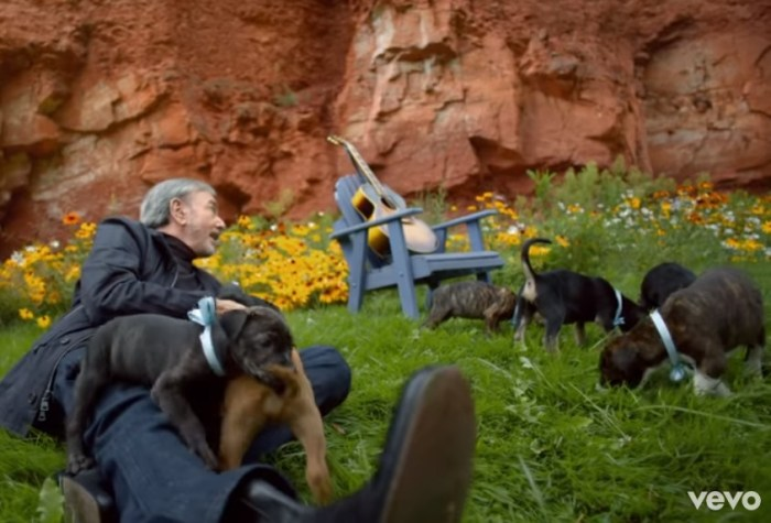 neil diamond and puppies in his music video