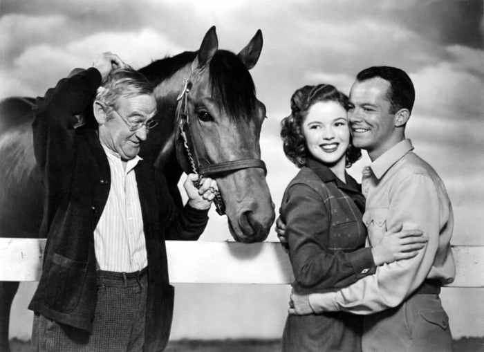 shirley-temple-the-story-of-seabiscuit