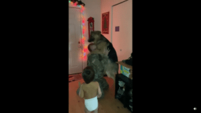 Despite being a dog, this German Shepard pulled off one enthusiastic bear hug