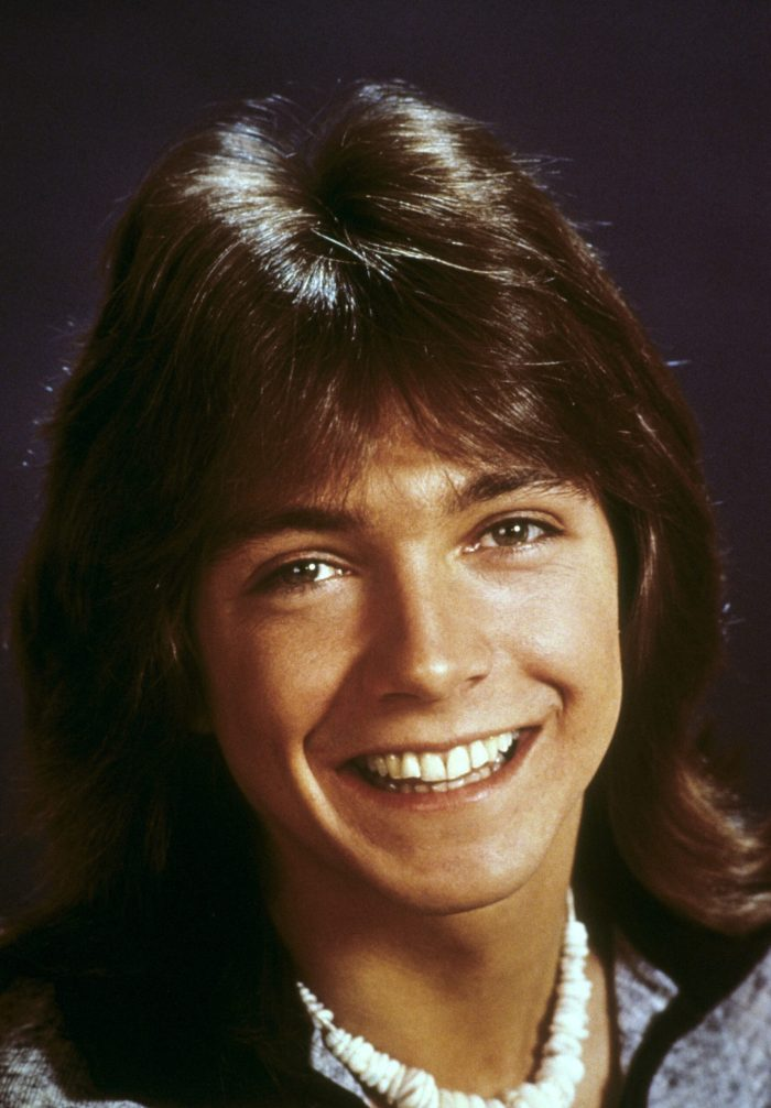 david cassidy the partridge family