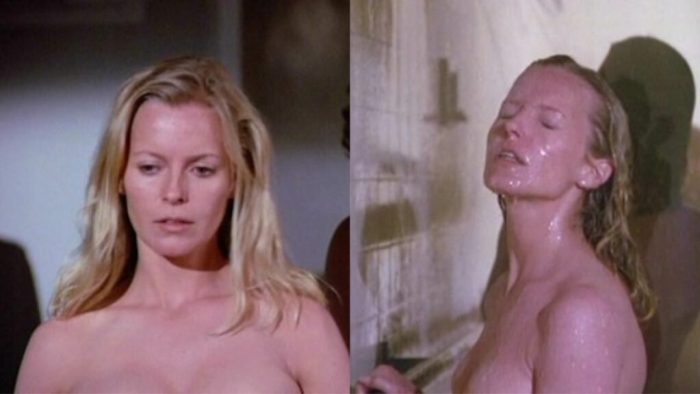 cheryl-ladd-a-death-in-the-family