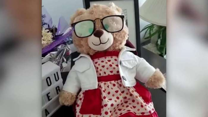 Stolen Teddy Bear With Dying Mother's Voice Finally Reunited With Owner
