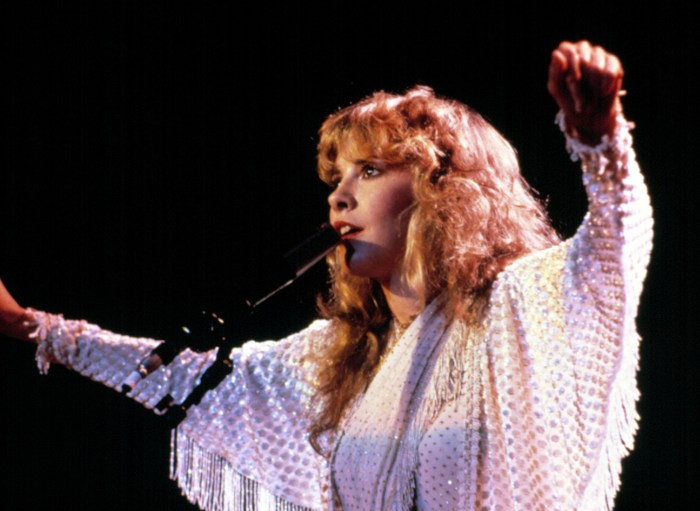 Stevie Nicks Says Fleetwood Mac Would've Never Happened If She Didn't Have An Abortion