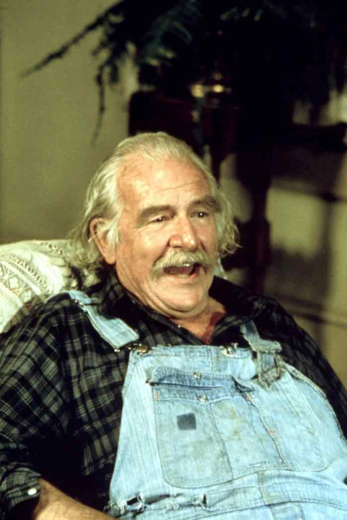 THE WALTONS, Will Geer,