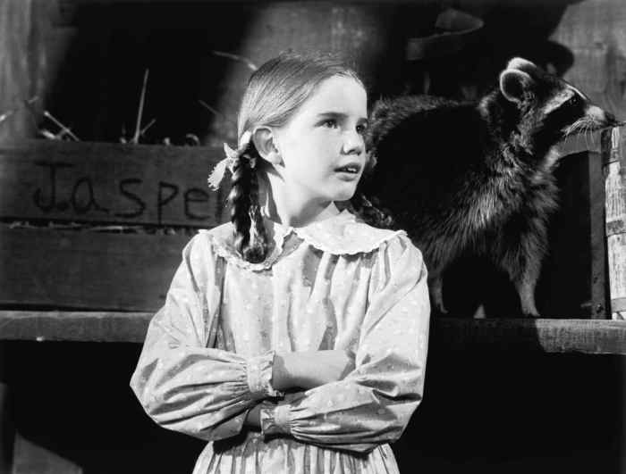 LITTLE HOUSE ON THE PRAIRIE, Melissa Gilbert in 'The Raccoon'
