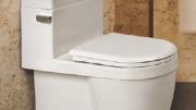 ICERA Muse low-flow toilet