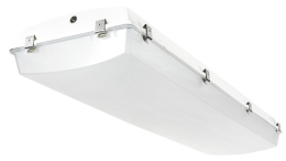 Precision-Paragon's LED LVT