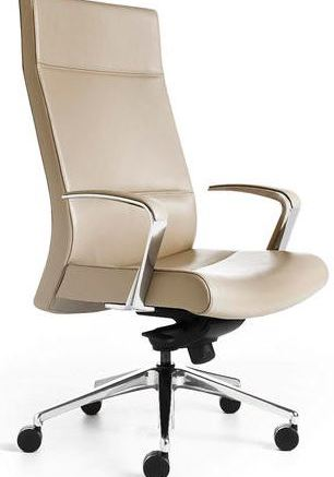 Stylex Insight Executive Chair