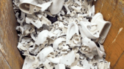Crossville has recycled 14,255,082 pounds of fired porcelain since the 2009 launch of the Tile Take-Back program and TOTO USA recycling partnership.