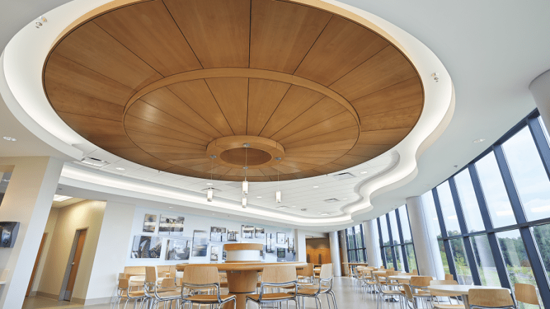 Veneer Ceiling Panels Improve Acoustics Retrofit