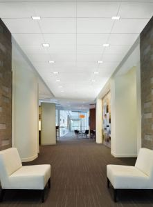 Led Recessed Downlights Install In Ceiling Suspension