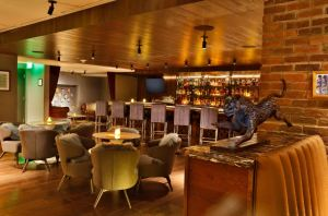 The two bars at the site include a rooftop pool clubroom and subterranean bourbon library.