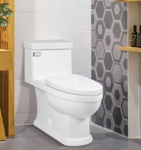 Karo II is a one-piece elongated toilet that features ICERA's anti-microbial MicroGlaze.