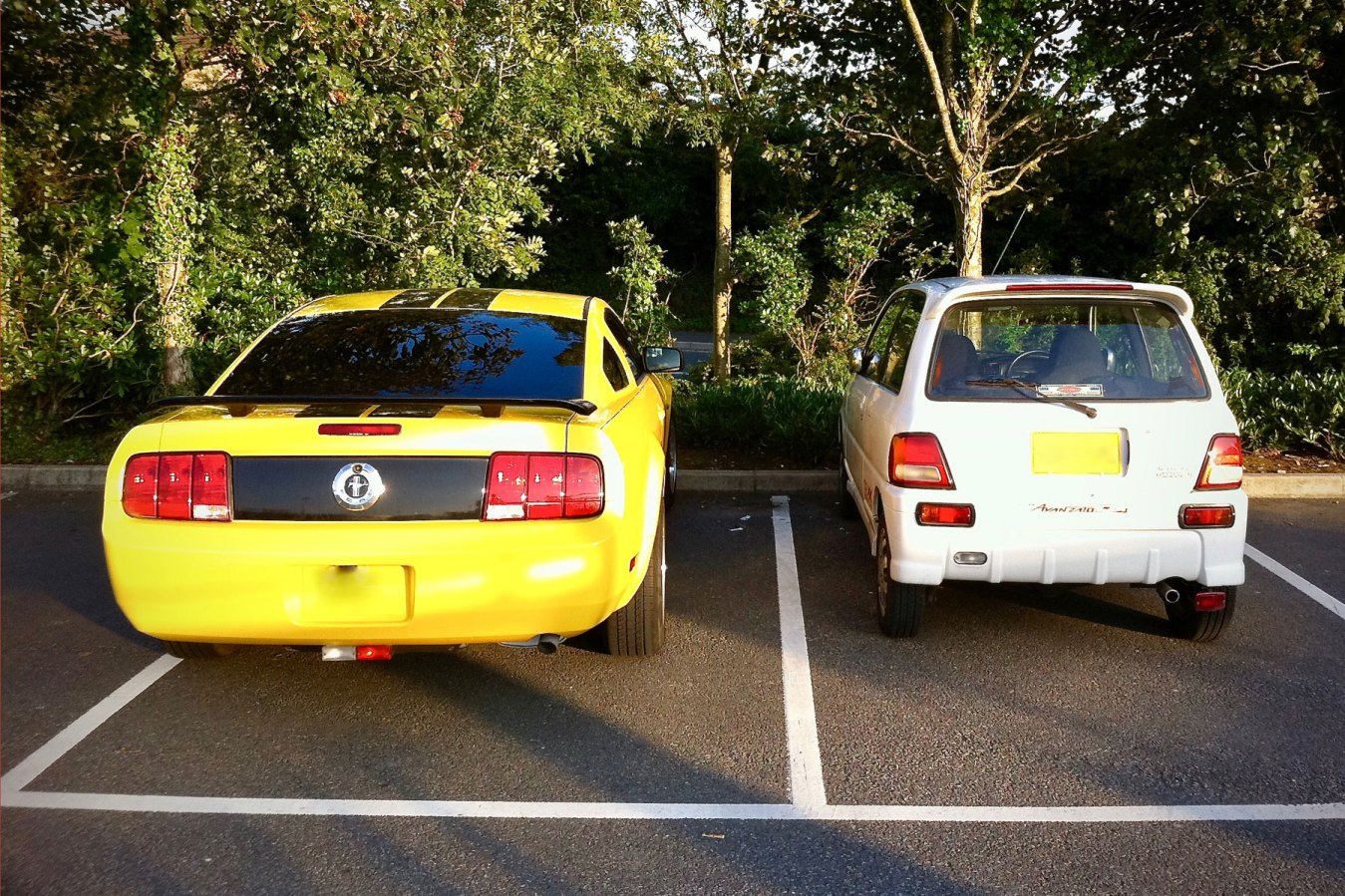 Little and large - Mustang meets Avanzato