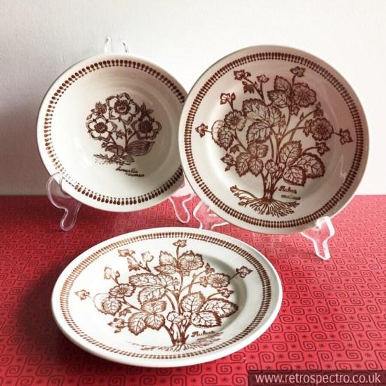 Kathie Winkle Wild Flowers Pattern Broadhurst Potteries