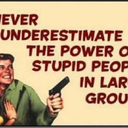 dumb_voters2
