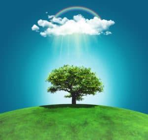 Les métiers dans le développement durable