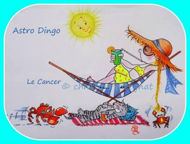 """astro-dingo """"le cancer"""""""